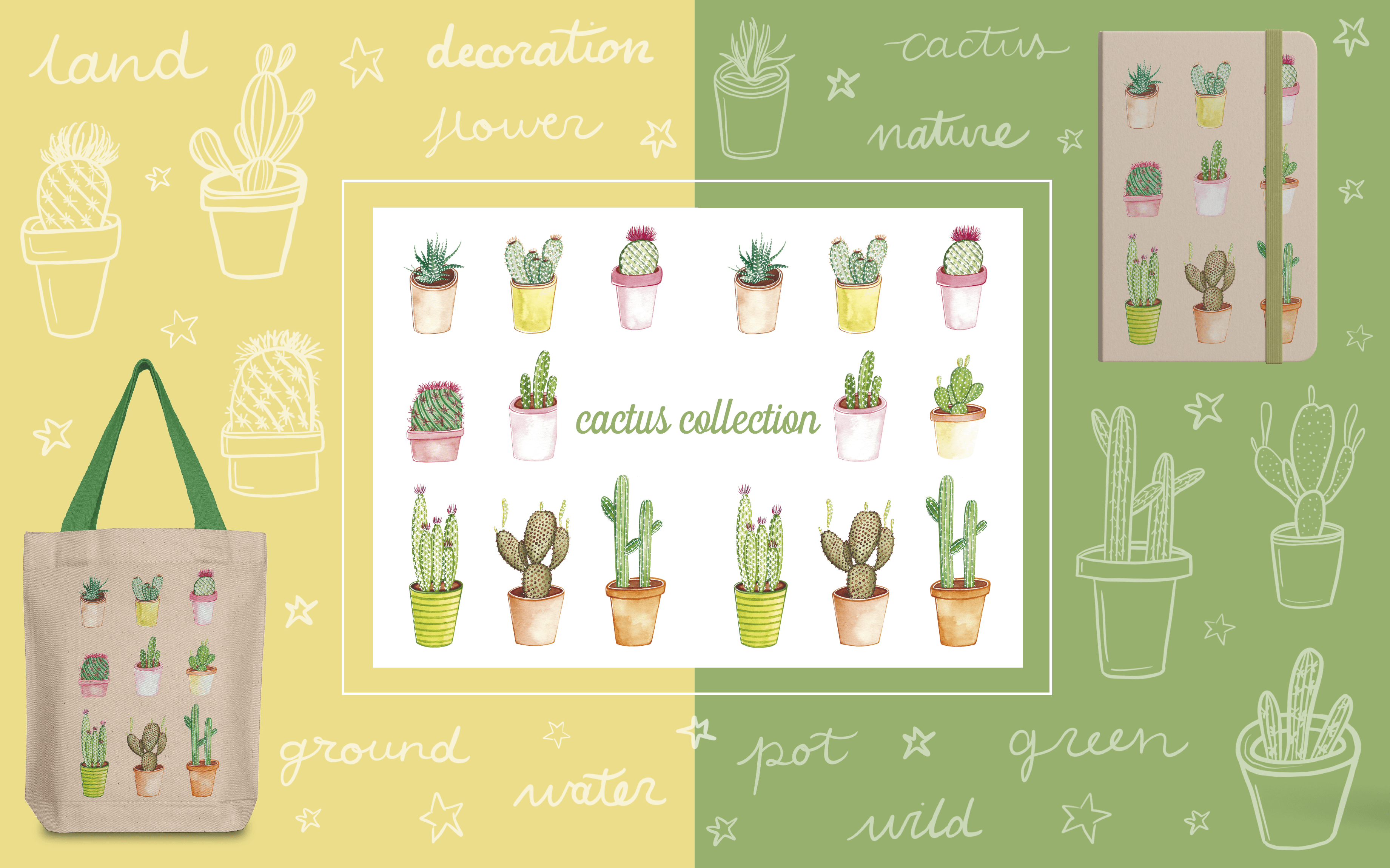 Cactus Collection - Art Licensing
