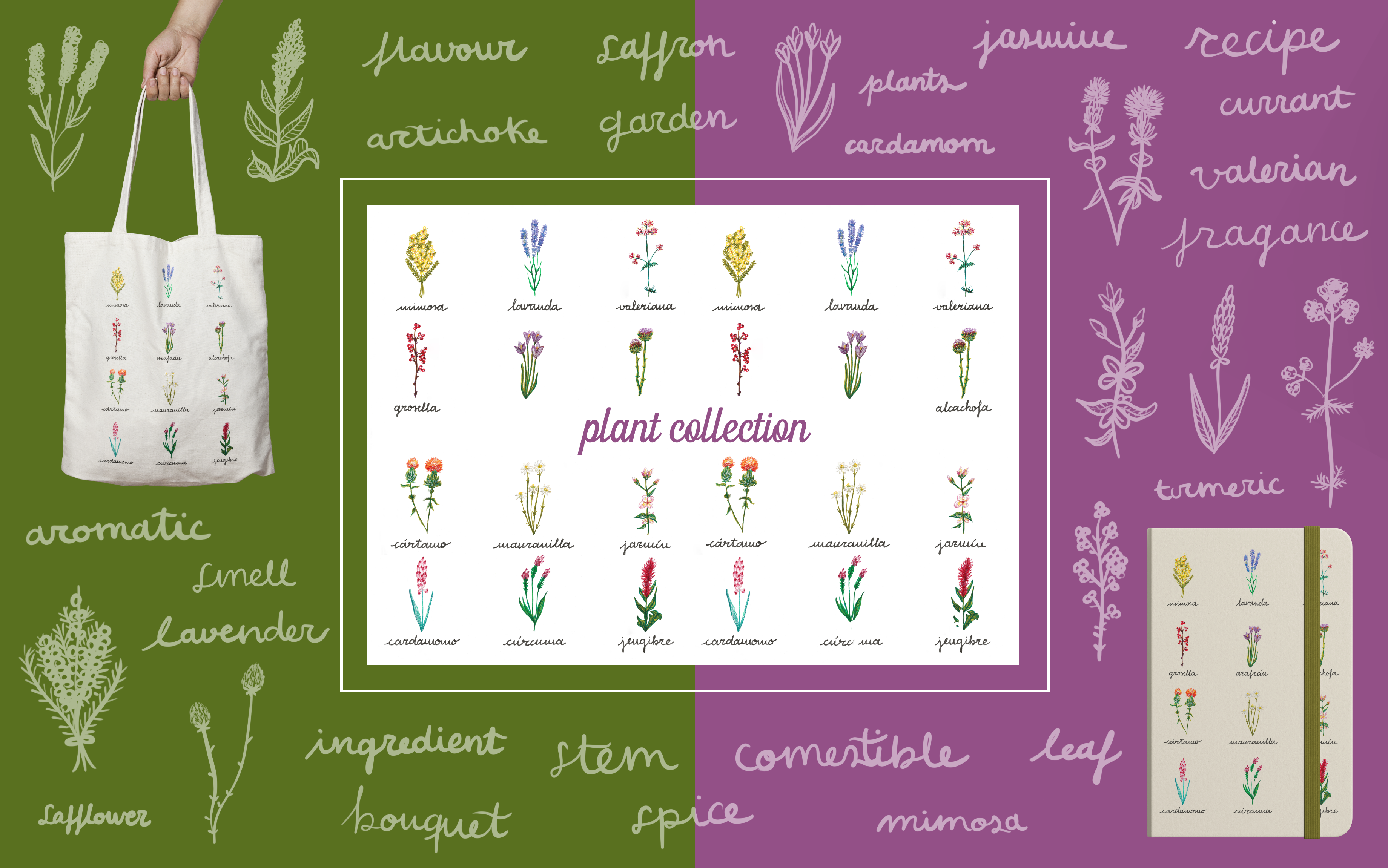 Plant Collection - Art Licensing